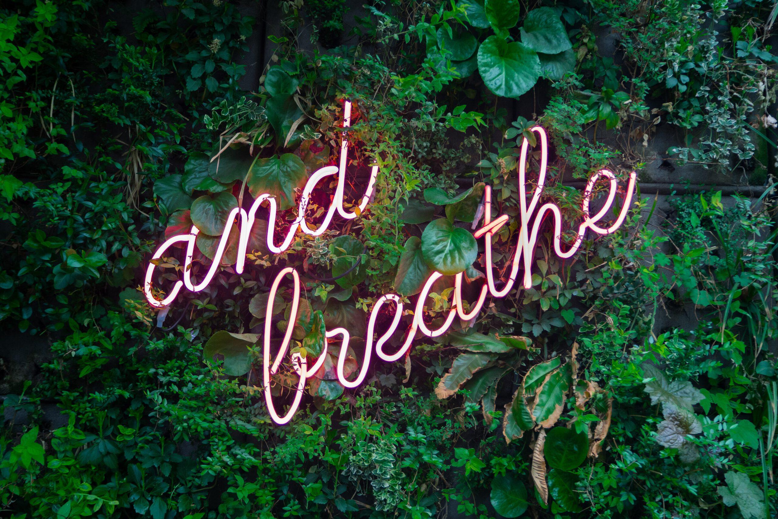 """Valaistu teksti """"and breathe"""" kasvien joukossa"""