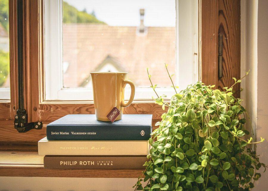 Kirjoja ikkunan edessä ja niiden päällä kahvikuppi. Vieressä vihreä kasvi.