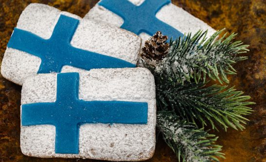 Kuvassa on kolme suorakaiteen muotoista piparia ja ne on koristeltu suomen lipuiksi. Pipareiden seurassa on kuusen oksa ja käpy.