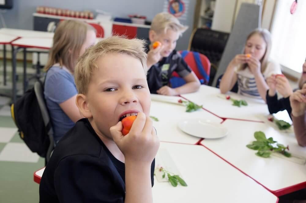 Lapset syömässä hedelmiä
