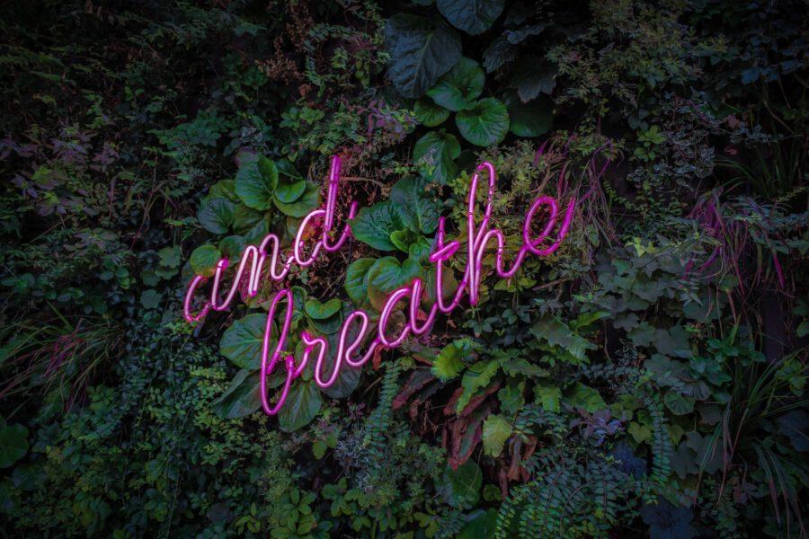 """Kuvassa teksti """"and breathe"""" kasvien keskellä."""