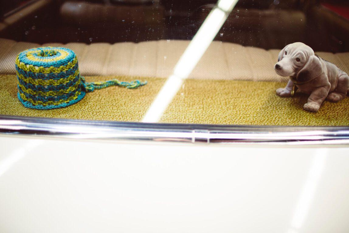 Kuvassa käärmeeltä näyttävä sini- ja vihreäraidallinen lankakerä ja lelukoira katsovat toisiaan.